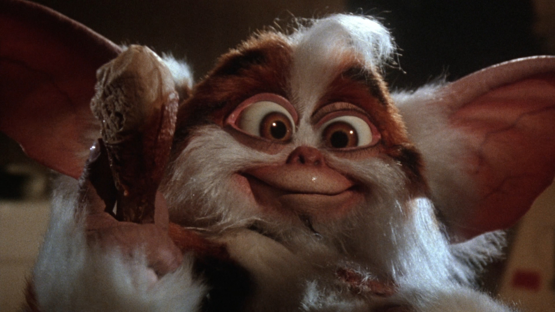 What was the the best part of Gremlins 2? | The Nostalgia Blog