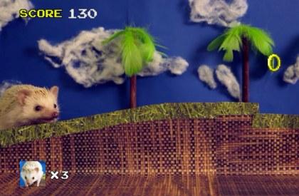 sonic-the-hedgehog-irl