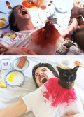 movie-cats-1